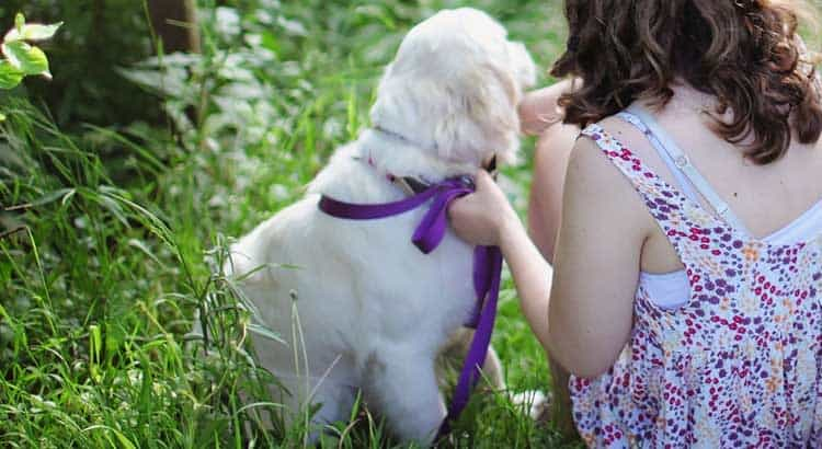 Little girl in garden with puppy on leash turned away from camera